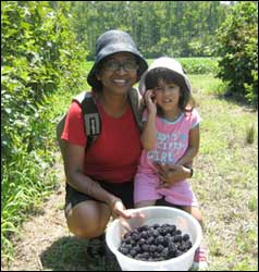 blackberry-picking